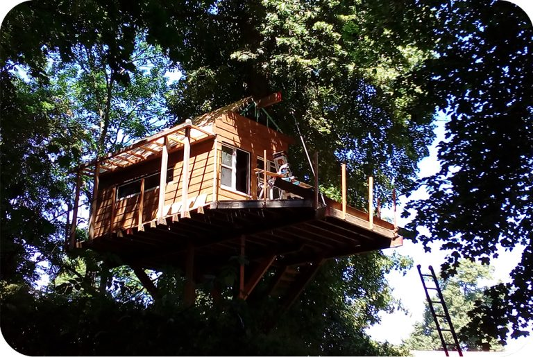 Hoge, boomhut, opbouw, bed and breakfast, treehouse, wood, cabin in the woods