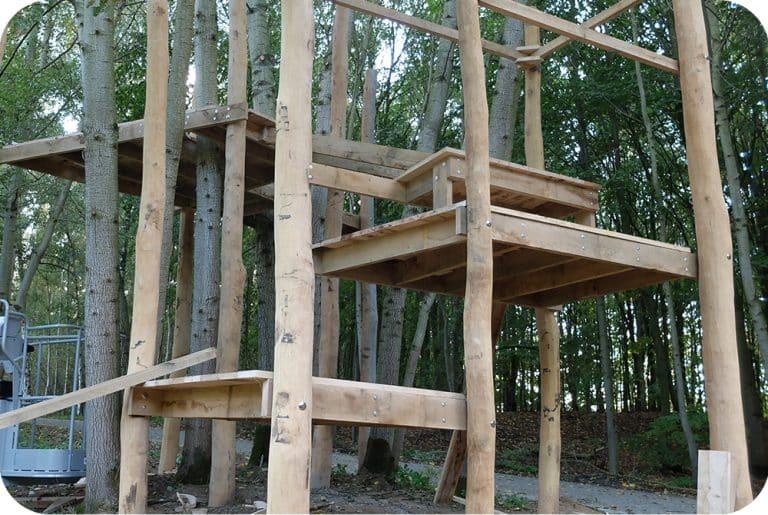 Platformen op verschillende niveau's als basis voor boomhut