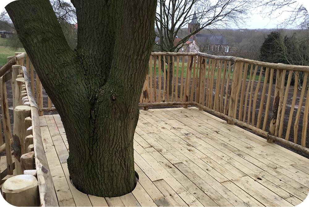 Terras rond boom bouwen, terras in boom, uitzicht, hoogte, platform, kastanje, eik
