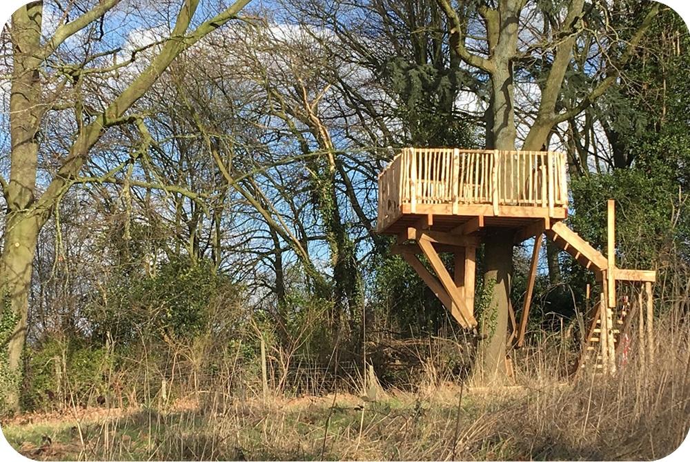 terras op hoogte uitkijk platform boomhut bouwen boomterras
