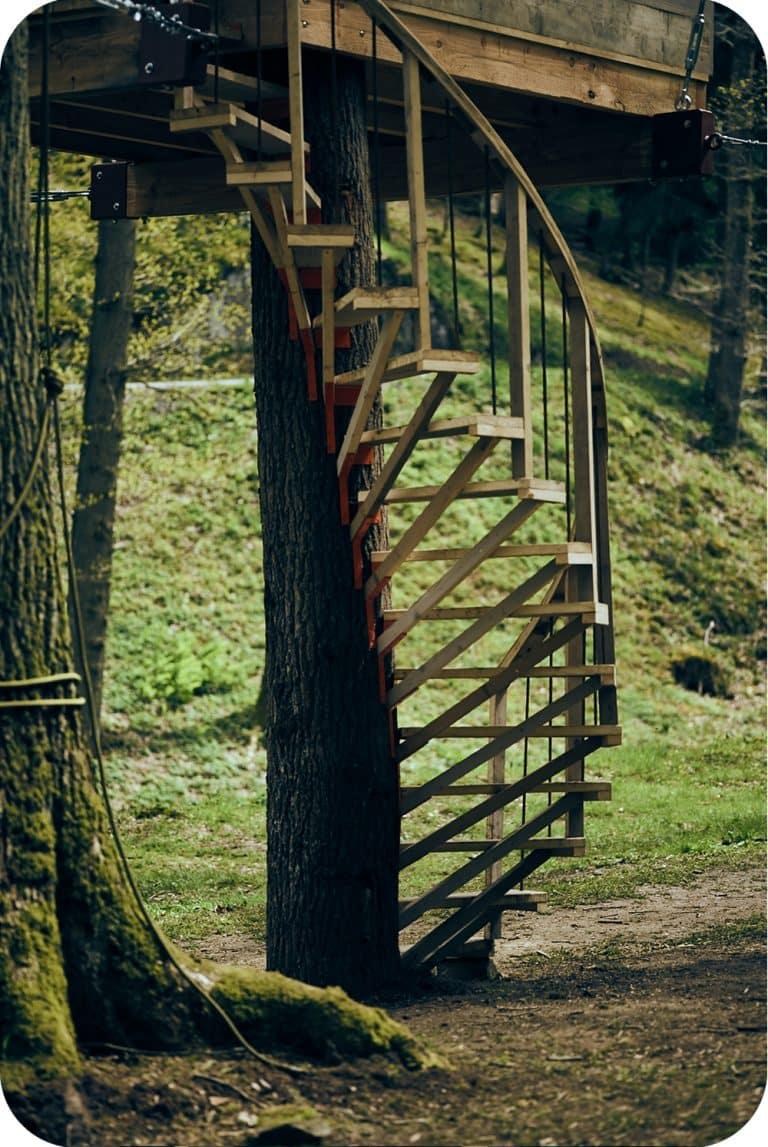 bouwen van draaitrap rond boomstam onder boomhut