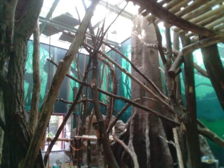 inrichting dierentuin planckendael