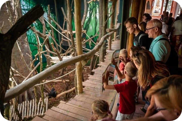 expeditie bonobo Planckendael